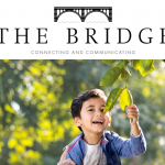 Our magazine 'The Bridge' Spring 2021